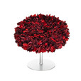 Moroso - Bouquet Sessel